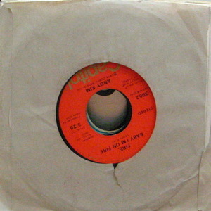 Andy Kim/Here Comes The Mornin' (7 inch)